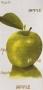Cuba Apple GN 1
